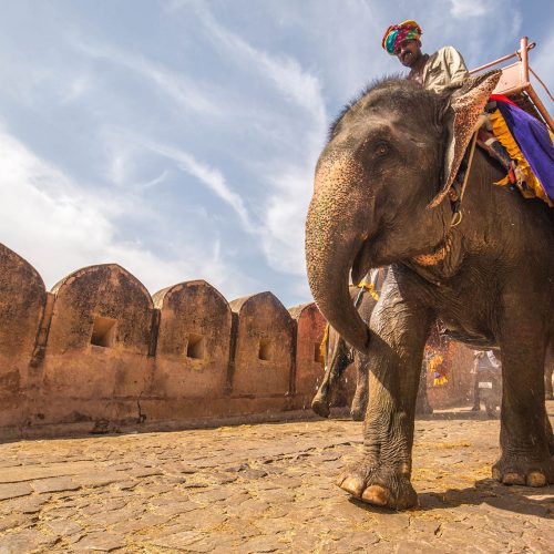13 Amazing things to do in India